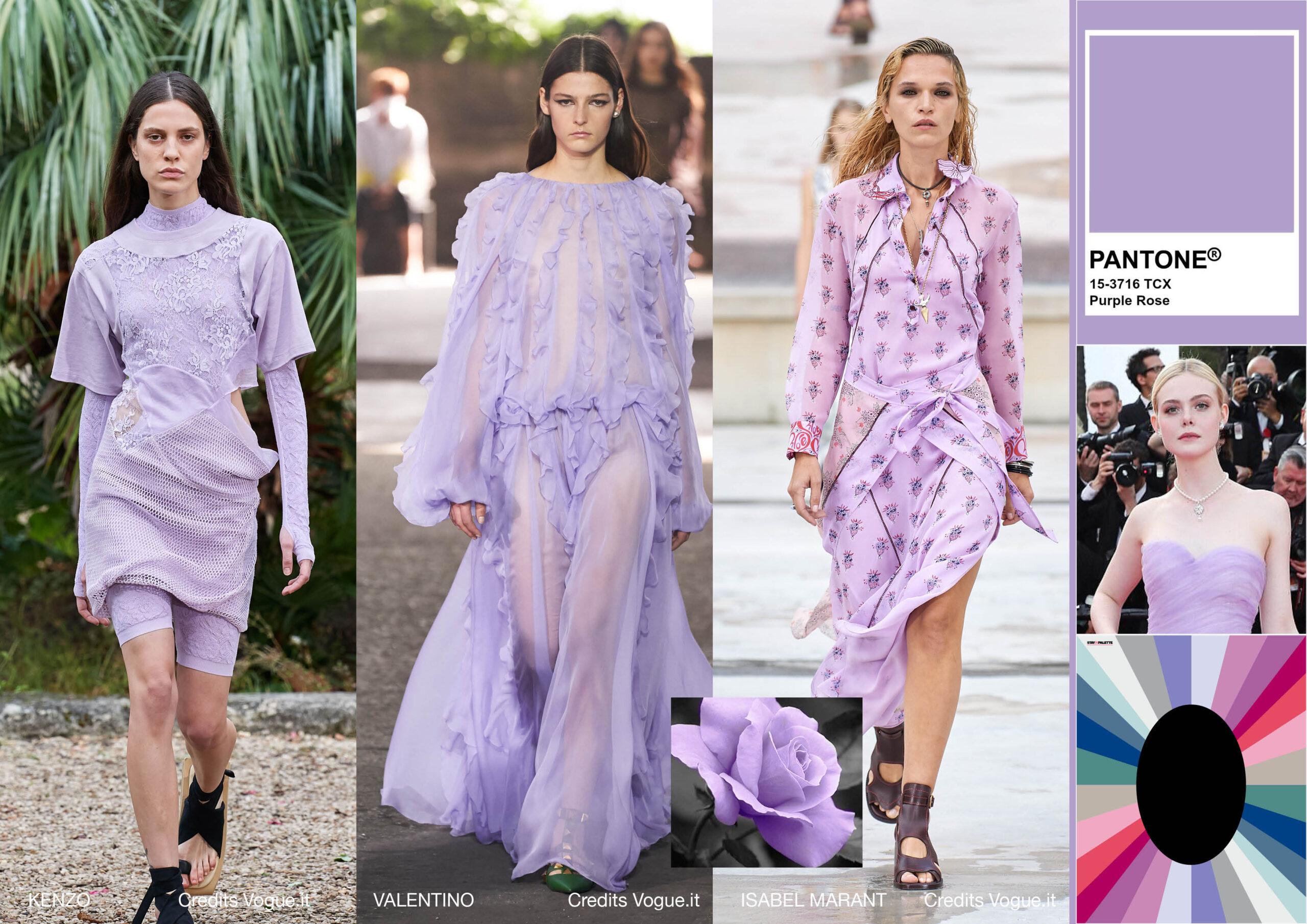 Purple Rose Primavera Estate 2021
