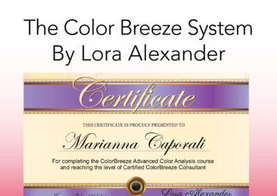 Color Breeze System Certification