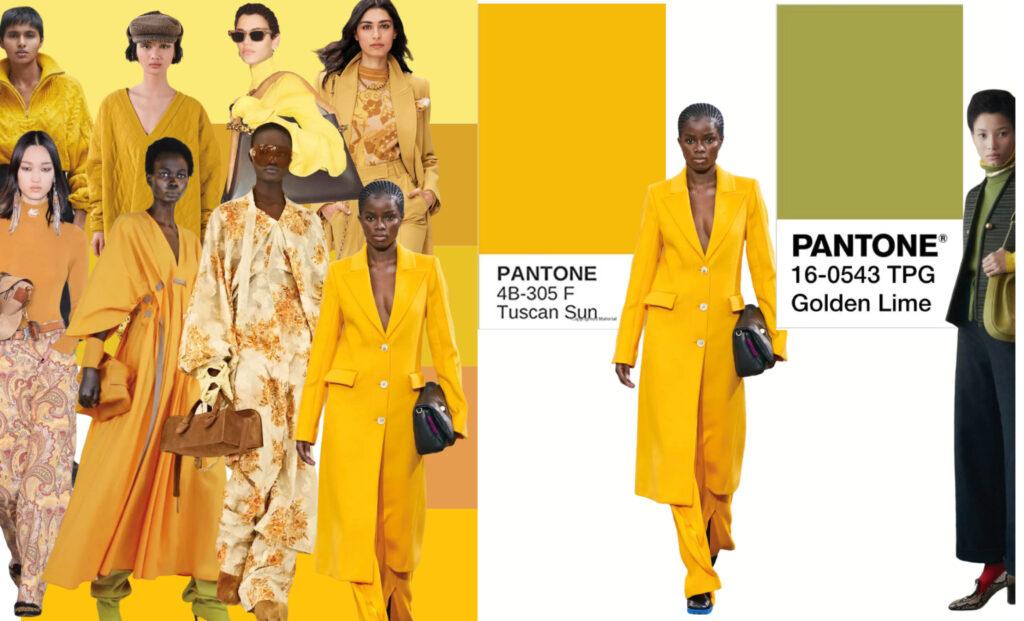 autunno inverno 2021 il giallo e verde